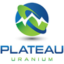 Plateau Energy Metals Inc.